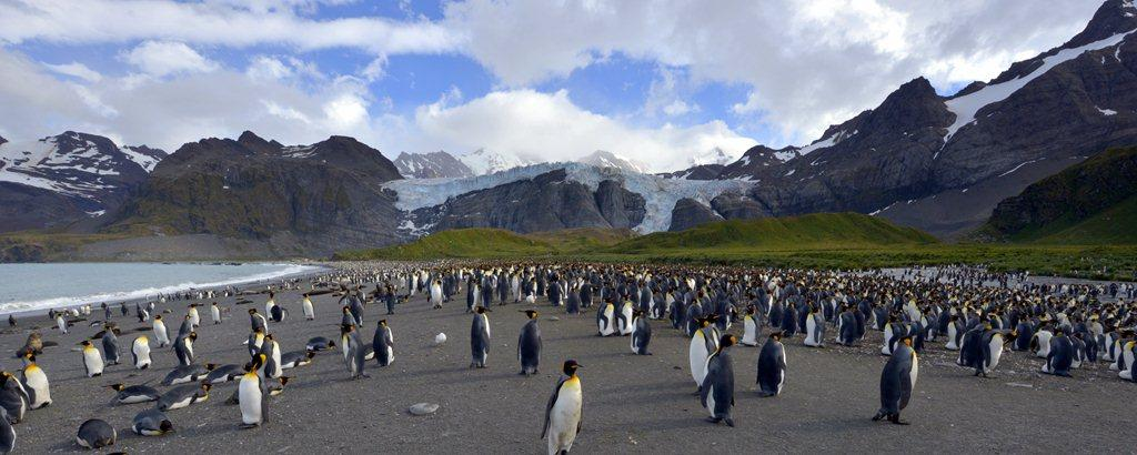 , Silversea Expeditions