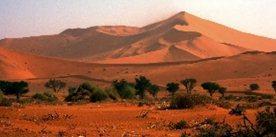 , Afryka
