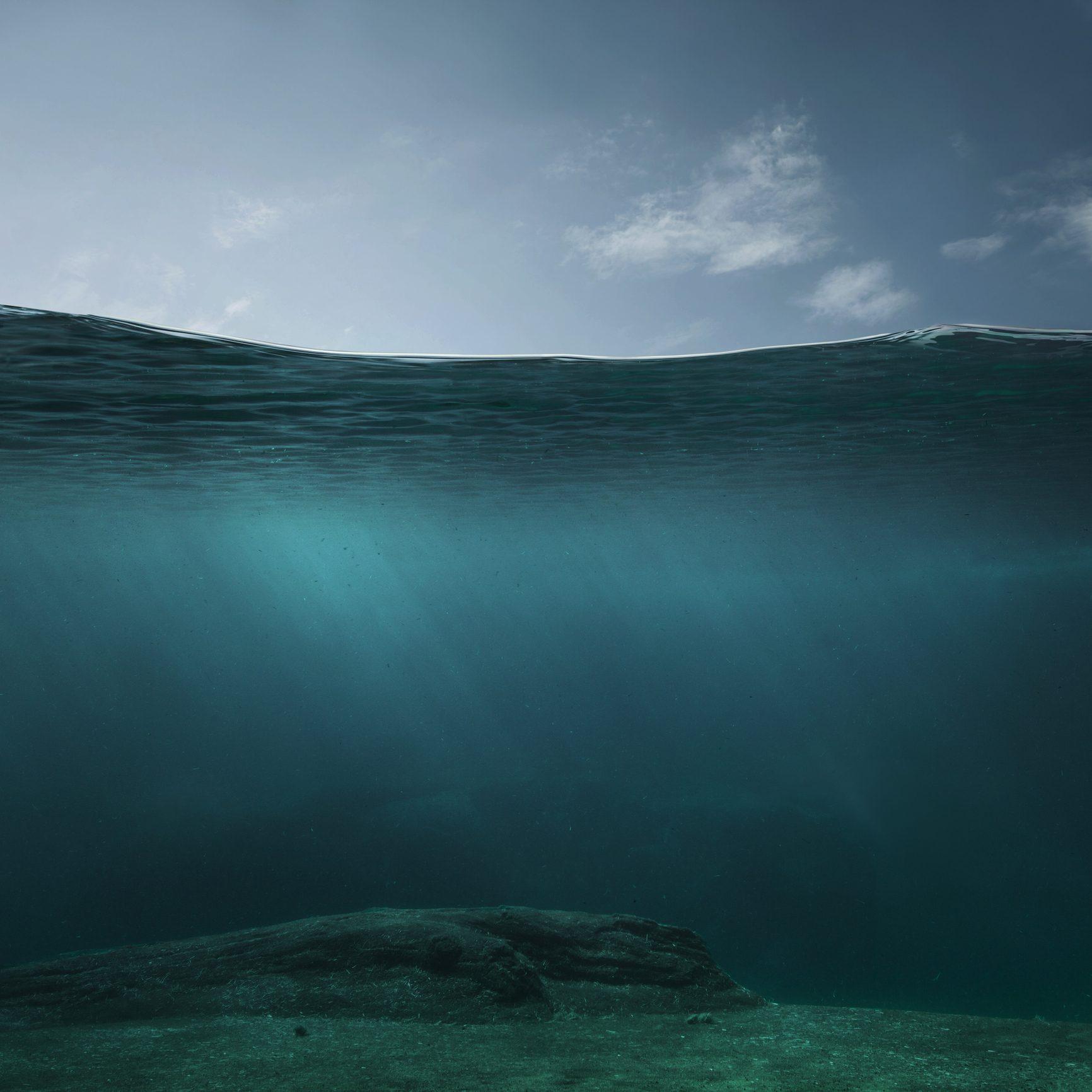 Morski obraz